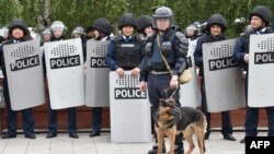 Сотрудники полиции в спецобмундировании и служебная собака на месте предполагаемой акции протеста против итогов досрочных выборов президента Казахстана. Шымкент, 9 июня 2019 года.