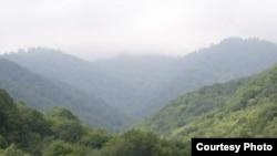 Armenia - Teghut forest.