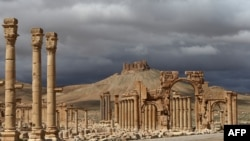 The air strikes in question came a day after Islamic State took back control of the ancient desert city of Palmyra in Syria (file photo).