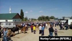 Жетіген ауылындағы жексенбілік мал базары. Алматы облысы, 19 мамыр 2019 жыл.