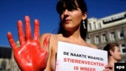 Противники корриды тоже зарегистрировались и участвуют в испанских выборах