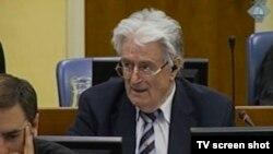 Karadžić u sudnici 29. srpnja 2013.