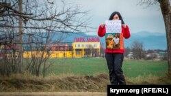Пикет против открытия карьера у парка львов «Тайган», 27 января 2019 года