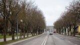 Каштанавыя алеі абапал вуліцы Горкага ўГорадні