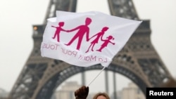 Французский вариант флага