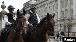 Britaniya polisi