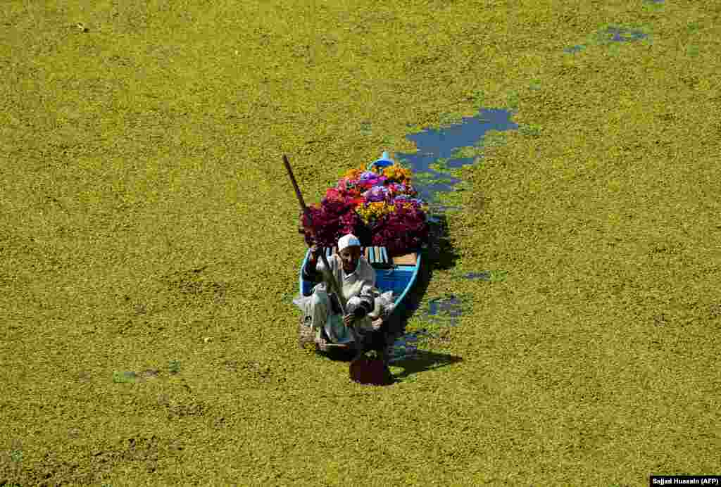 A Kashmiri flower vendor paddles his boat along Dal Lake in Srinagar, India. (AFP/Sajjad Hussain)