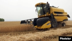 Armenia - Wheat harvest in Shirak province, 1Aug2012.