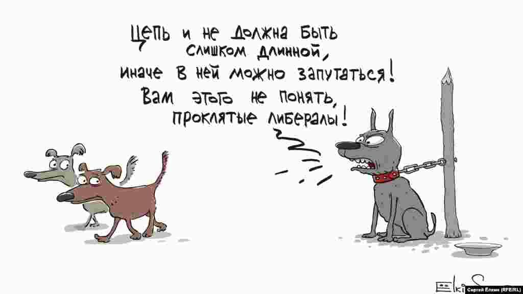 Автор: Сергей Елкин