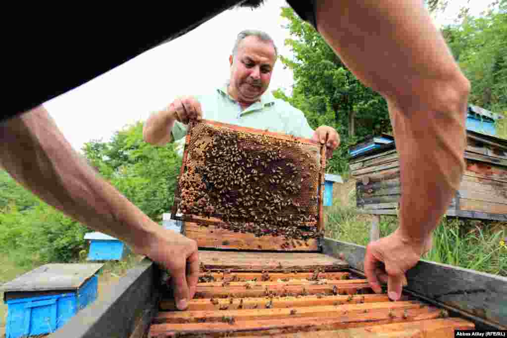 Bee keeping is one of the region's oldest industries.