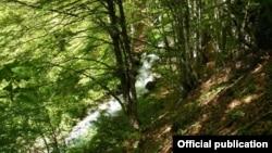 """Жировничка Река на проектираната локација на горниот зафат за ХЕ Жировничка Река II во НП Маврово. Изовр """"Фронт 21/42."""""""