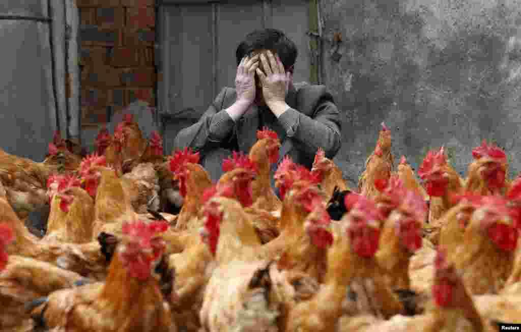 КИНА - Маж од источната кинеска провинција Џиангсу е потврден како првото лице заразено со вирусот Х10Н3 од птичји грип, соопшти кинеската Национална здравствена комисија (НЗЦ). 41-годишниот маж, жител на градот Женѓијанг, бил хоспитализиран на 28 април откако забележал симптоми како треска.