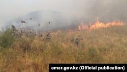 Возгорание сухой травы в Алматинской области. Иллюстративное фото.
