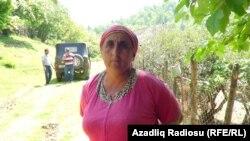 Nəsibə Şahmuradova
