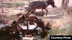 ناعور مياه في جنوب العراق