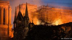 Цитаты Свободы. Пожар в соборе Нотр-Дам и день рождения Пугачевой