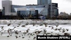 Екатеринбург шаары.