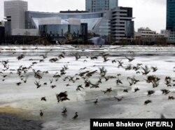 Ельцин-Центр в Екатеринбурге