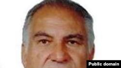 رضا کرمانی، عضو حزب پان ایرانیست