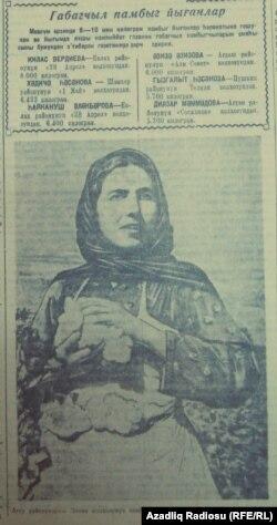 Sovet pambıqçısı