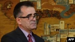 Ambasadorul Mihai Gribincea