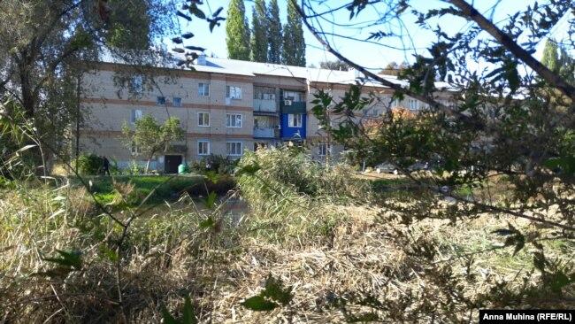 Двор дома №8 по ул. Школьной в Подлесном