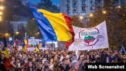 Участники демонстрации в Бухаресте требуют предоставить румынам за границей право голосования во втором туре выборов президента.
