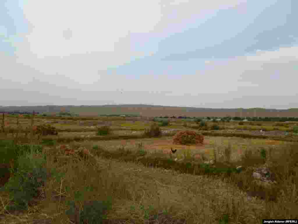 В год местные крестьяне собирают около 8 тысяч тонн риса