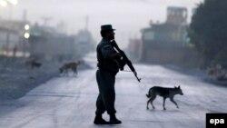 Owgan polisiýasy.