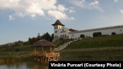 Vinăria Purcari