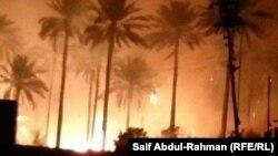 من حرائق بساتين بدرة في محافظة واسط