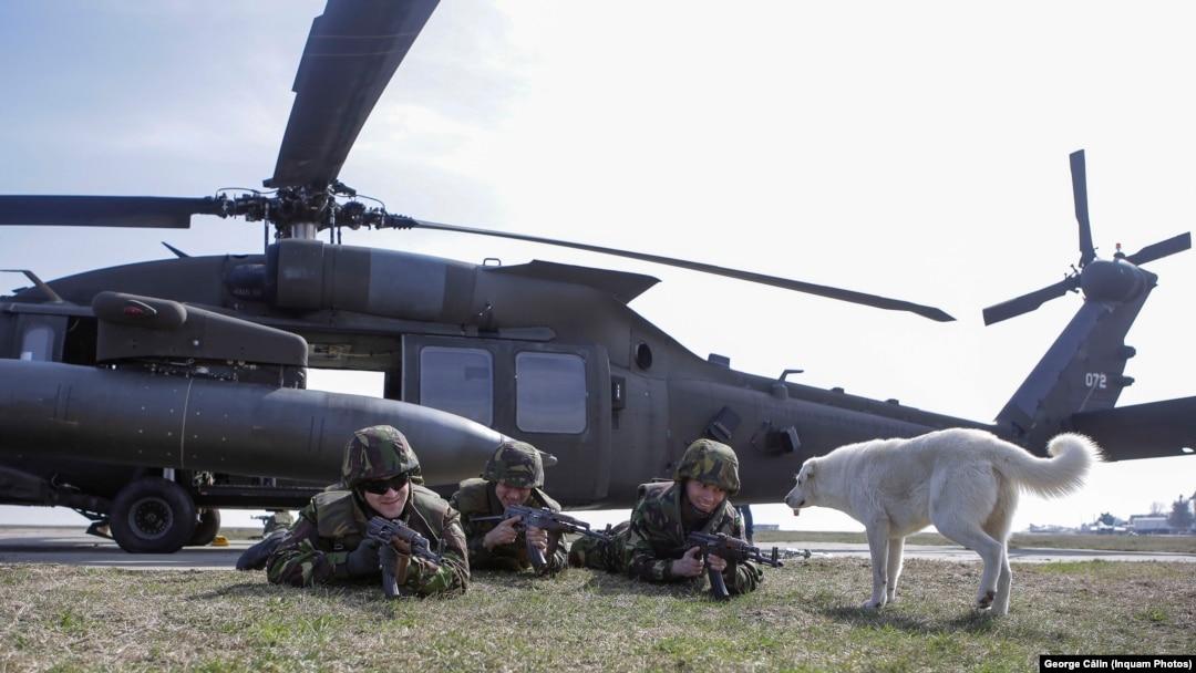 site- ul armatei australe armata)