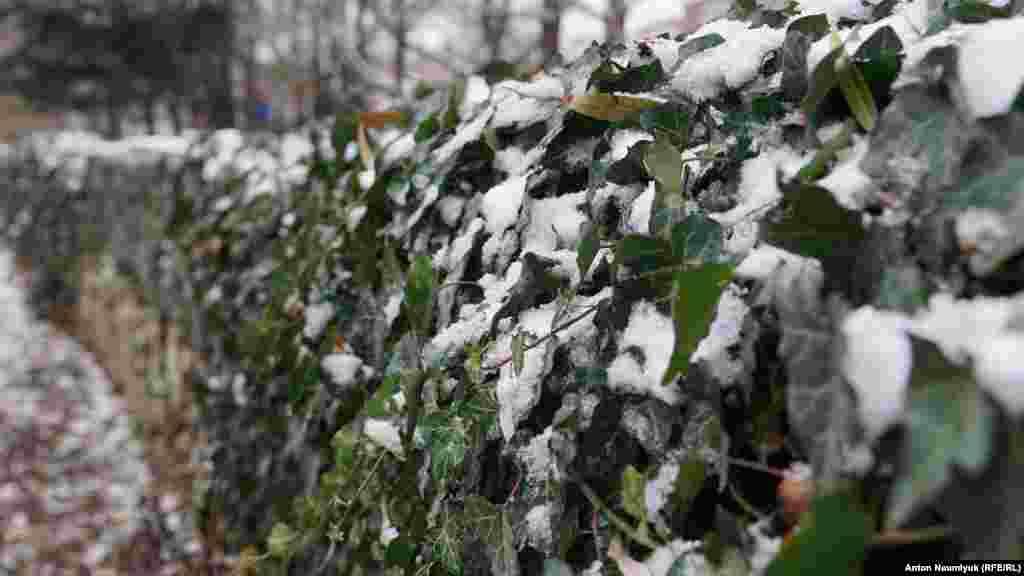Зима в Сімферополі