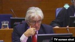 Lider bosanskih Srba Radovan Karadžić tokom suđenja za genocid i ratne zločine, Hag, 04. novembar 2010.