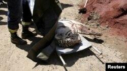 Վրաստան - Ոստիկանները սպանել են վագրին, որը մինչ այդ մարդու էր հոշոտել Թբիլիսիի կենտրոնում, 17-ը հունիսի, 2015թ․