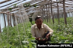 По оценке Соцфонда, в Кыргызстане на одного пенсионера приходится 1,2 работающих человека. В соответствии с рекомендациями Международной организации труда, на одного пенсионера должно приходиться не менее 3 плательщиков.