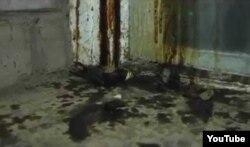 """""""Новая жизнь"""" шіркеуінің сыртындағы сұйықтық төгілген терезе түбі. Ақтөбе, 1 қараша 2013 жыл."""