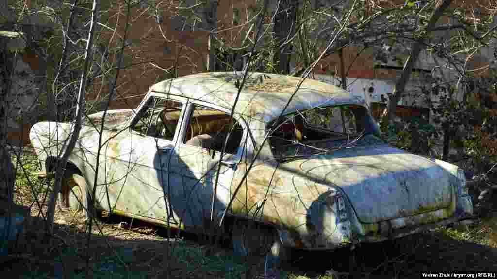 Серед дерев вростає колесами в землю «чудо» радянського автопрому – ГАЗ-21 «Волга»