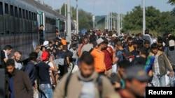 Мігранти сходять з поїзда в Ботово, Хорватія, 23 вересня 2015 року