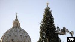 Ялинка від України у Ватикані, 7 грудня 2011 року