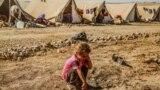 طفلة أيزيدية في مخيم للنازحين في السليمانية