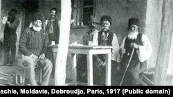 Bulgari din Dobrogea