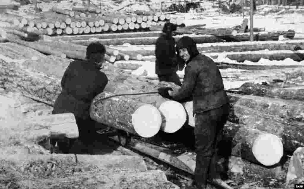 Convicts work on timber at Ozerlag, one of the largest Stalin-era concentration camps, in the Irkutsk region of Siberia. (undated)