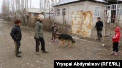 Ак-Терек айылынын балдары.