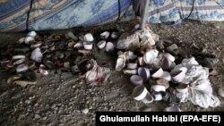 آرشیف/ تصویر از یک رویداد در ولایت ننگرهار که در سال گذشته میلادی رخ داده بود