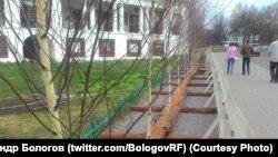 Срубленные березки, воткнутые в деревянный держатель, на Кремлевской улице в Суздале