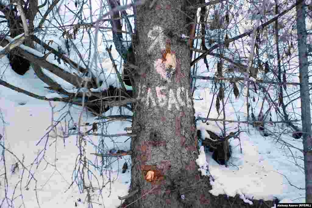Участники разделилисьна две группы и вернулись в город. Ближе к вечеру в Facebook'e появилась запись, будто в горах видели какого-то человека, предположительно, его миссия заключалась в том, чтобы убедиться – в надписях, которые оставили на деревьях активисты, нет политически крамольных посланий.