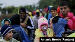 Migrantët në kufirin ndërmjet Serbisë dhe Kroacisë