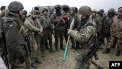 Voluntari ucraineni în apropiere de portul Mariupol