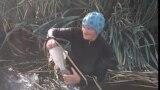 grab: hand fishing babushka